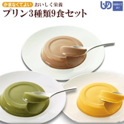 おいしく栄養 介護食プリン3種類9食セット