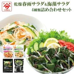 魚の屋 乾燥野菜 サラダ 詰め合わせセット 4種類